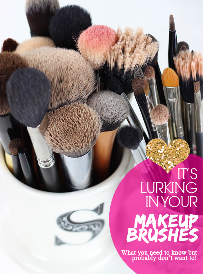 Bacteria in Makeup Brushes - From Shelley With Love