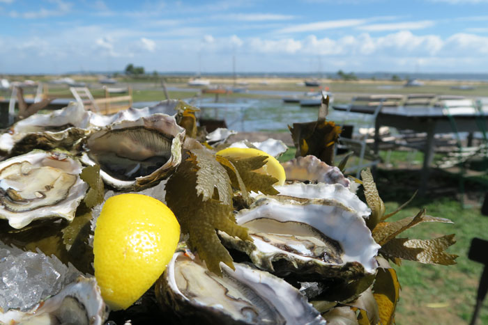 arcachon---oysters